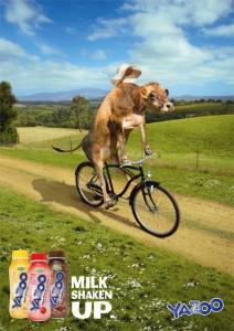 Yazoo poster1